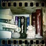 April 12 – one of my random bookshelves