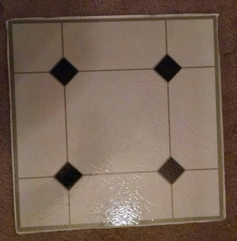 Tile that will go in it eventually