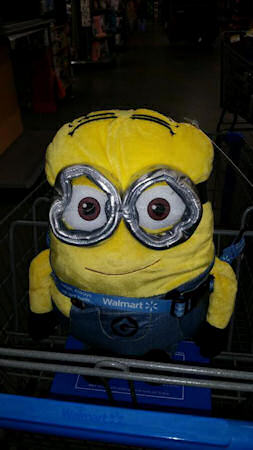 We then went shopping at Walmart in Shenandoah where we found this cute little minion looking for a home