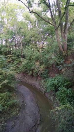 The creek it spans