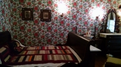 That wallpaper makes my eyes hurt