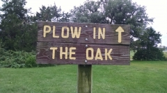 The plow in the oak park