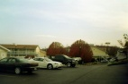 Branson motel - I was amazed that the trees had autumn leaves at Christmas