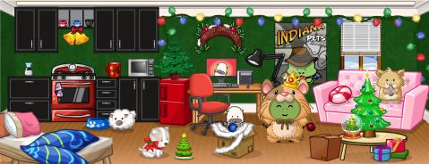 291-first-apartment-christmas-hmohd